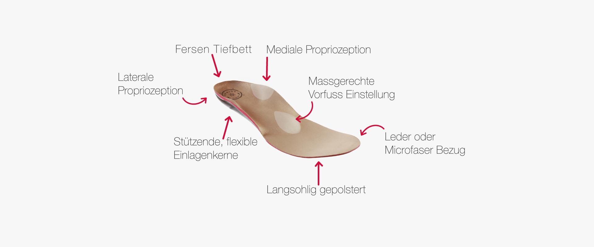 Erklärung, wie unsere orthopädischen Einlagen aufgebaut sind